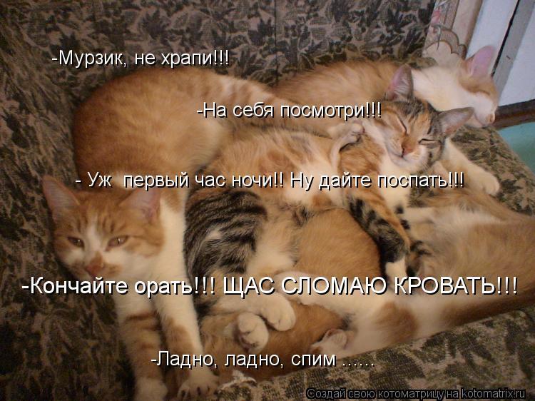 Котоматрица: -Мурзик, не храпи!!! -Кончайте орать!!! ЩАС СЛОМАЮ КРОВАТЬ!!! -Ладно, ладно, спим ...... -На себя посмотри!!! - Уж  первый час ночи!! Ну дайте поспать