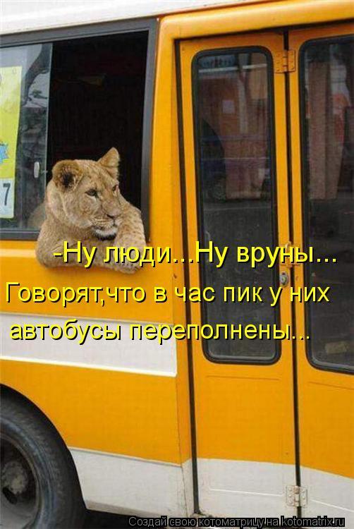 Котоматрица: -Ну люди...Ну вруны... Говорят,что в час пик у них автобусы переполнены...