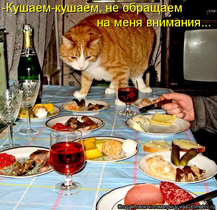 Котоматрица: -Кушаем-кушаем, не обращаем  на меня внимания...