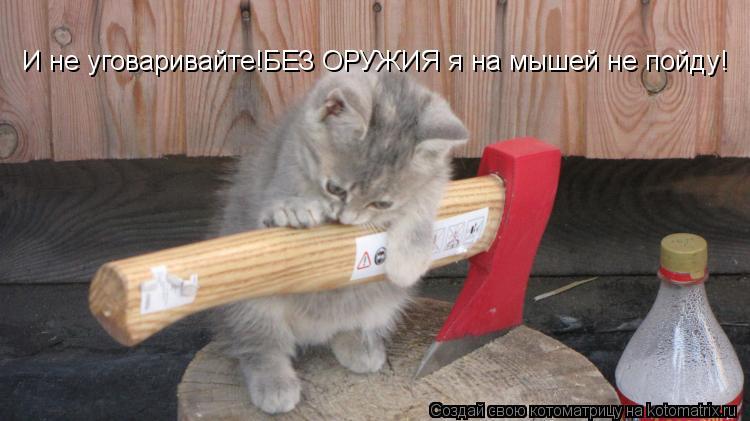 Котоматрица - И не уговаривайте!БЕЗ ОРУЖИЯ я на мышей не пойду!