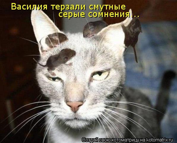 Котоматрица - Василия терзали смутные  серые сомнения...