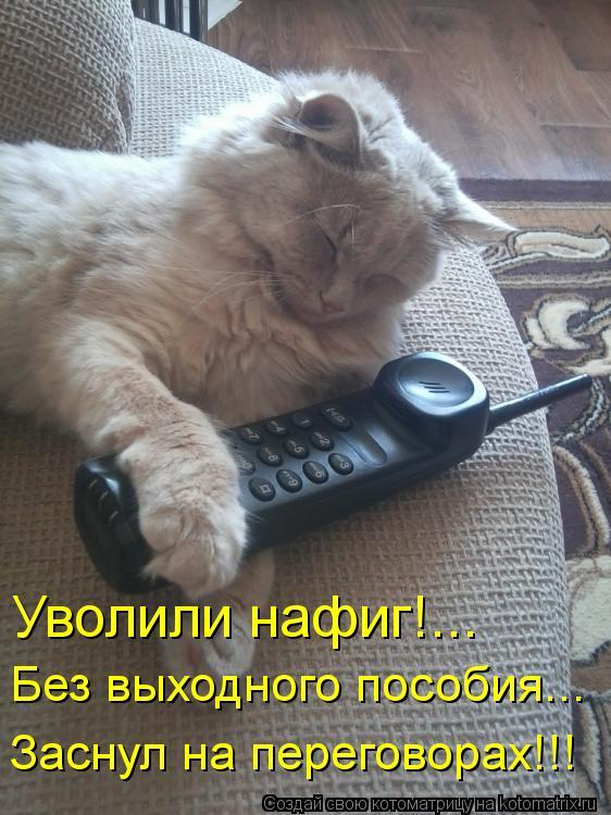 Котоматрица: Уволили нафиг!... Без выходного пособия... Заснул на переговорах!!!