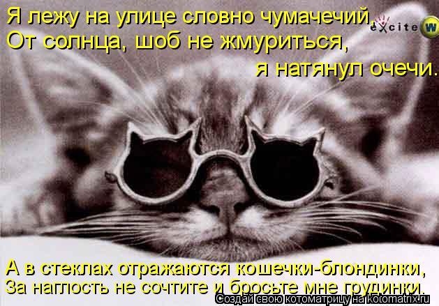 Котоматрица: Я лежу на улице словно чумачечий, От солнца, шоб не жмуриться, я натянул очечи. А в стеклах отражаются кошечки-блондинки, За наглость не сочт
