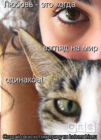 Котоматрица: Любовь - это когда взгляд на мир одинаков!