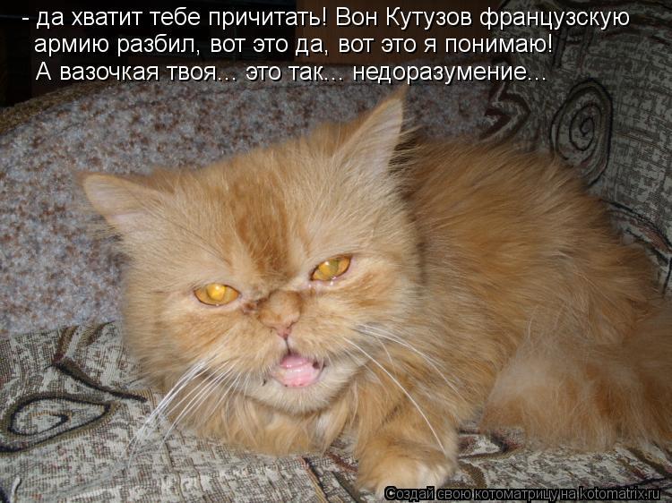 Котоматрица: - да хватит тебе причитать! Вон Кутузов французскую  армию разбил, вот это да, вот это я понимаю! А вазочкая твоя... это так... недоразумение...