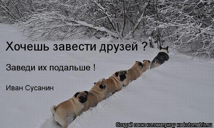 Котоматрица: Хочешь завести друзей ? Заведи их подальше ! Иван Сусанин