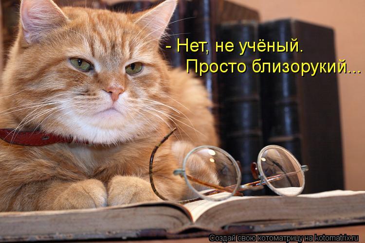 Котоматрица: - Нет, не учёный. Просто близорукий...