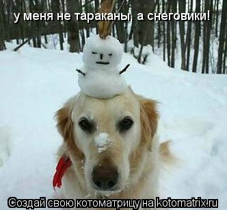 Котоматрица: у меня не тараканы, а снеговики!
