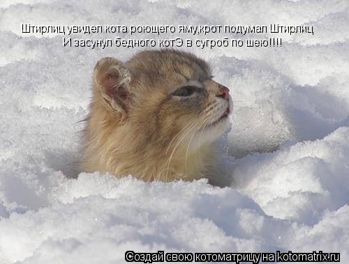 Котоматрица: Штирлиц увидел кота роющего яму,крот подумал Штирлиц И засунул бедного котЭ в сугроб по шею!!!!