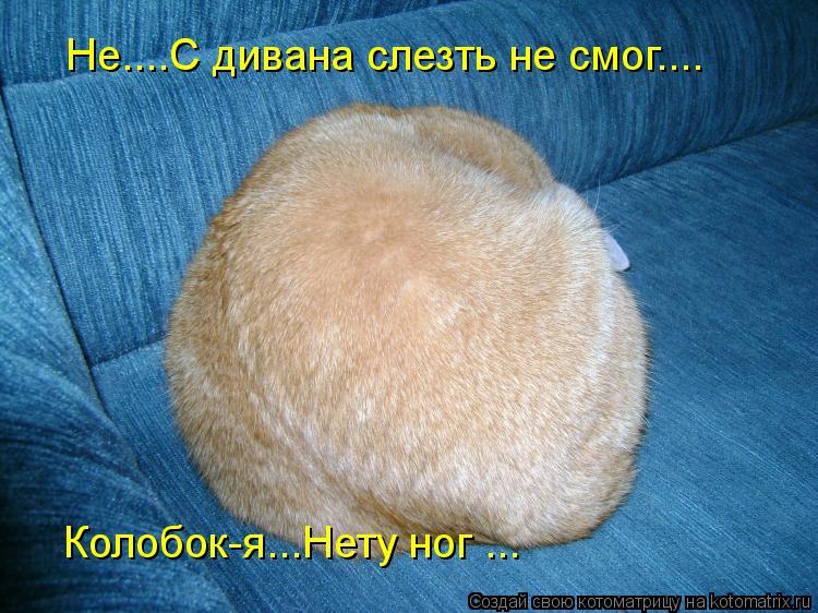 Котоматрица - Не....С дивана слезть не смог.... Колобок-я...Нету ног ...