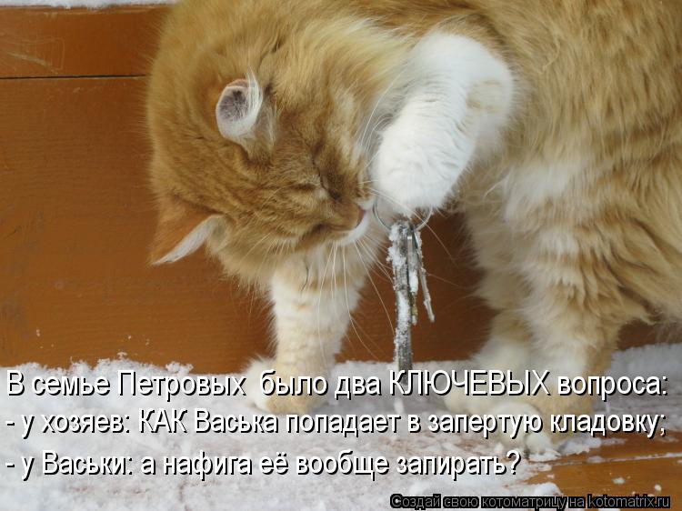 Котоматрица - В семье Петровых  было два КЛЮЧЕВЫХ вопроса: - у хозяев: КАК Васька по