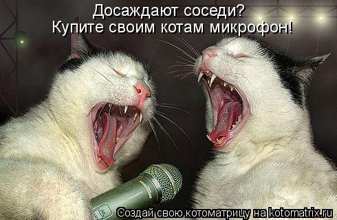 Котоматрица - Досаждают соседи?  Купите своим котам микрофон!