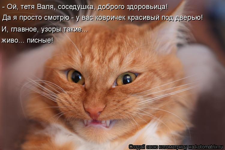 Котоматрица: - Ой, тетя Валя, соседушка, доброго здоровьица! Да я просто смотрю - у вас ковричек красивый под дверью! И, главное, узоры такие... живо... писные!