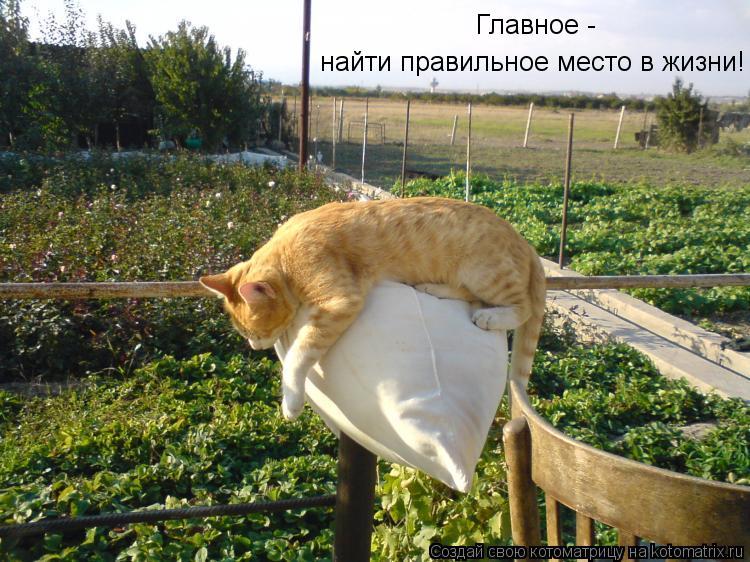 http://kotomatrix.ru/images/lolz/2012/04/04/1156823.jpg