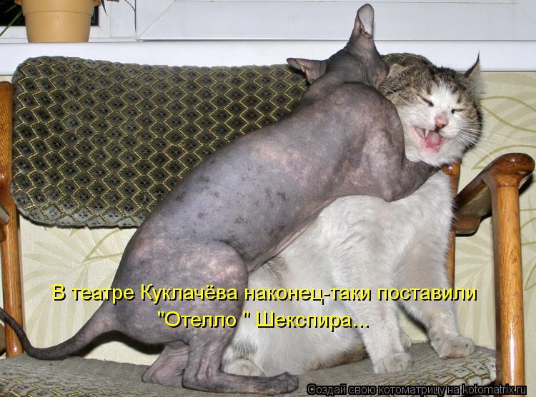 "Котоматрица: В театре Куклачёва наконец-таки поставили  ""Отелло "" Шекспира..."