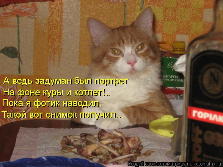 Котоматрица: А ведь задуман был портрет На фоне куры и котлет!.. Пока я фотик наводил, Такой вот снимок получил...
