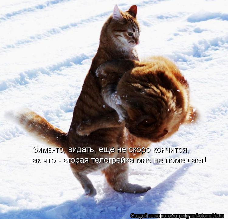 Котоматрица: Зима-то, видать, ещё не скоро кончится, так что - вторая телогрейка мне не помешает!