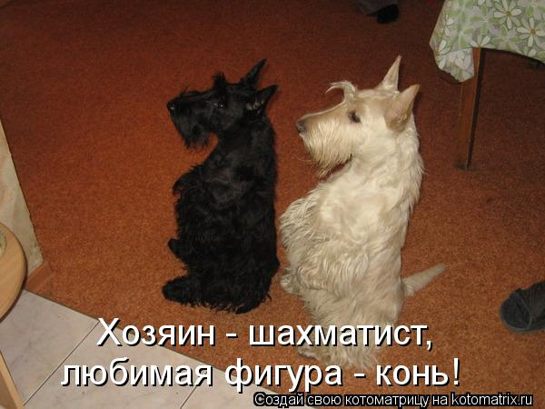 http://kotomatrix.ru/images/lolz/2012/04/05/1157672.jpg