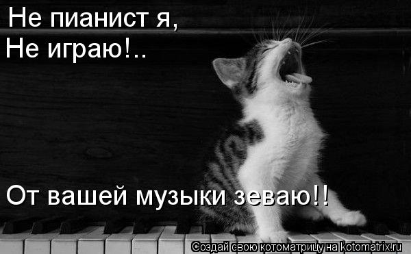 Котоматрица: Не пианист я, Не играю!.. От вашей музыки зеваю!!