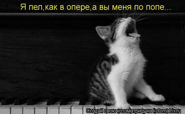 Котоматрица: Я пел,как в опере,а вы меня по попе...