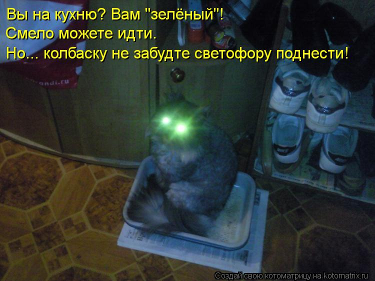 "Котоматрица - Вы на кухню? Вам ""зелёный""! Смело можете идти. Но... колбаску не забуд"