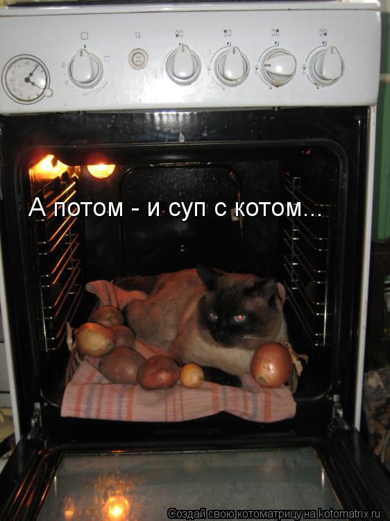 Котоматрица - А потом - и суп с котом...