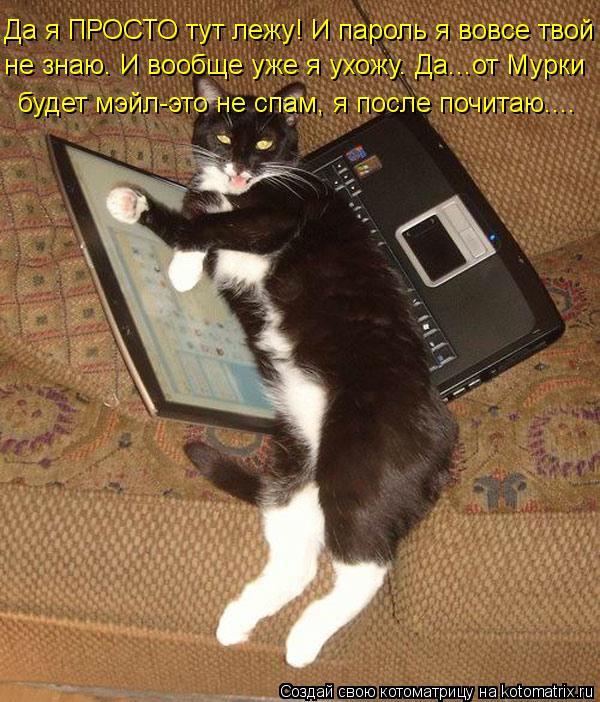 Котоматрица: Да я ПРОСТО тут лежу! И пароль я вовсе твой будет мэйл-это не спам, я после почитаю.... не знаю. И вообще уже я ухожу. Да...от Мурки