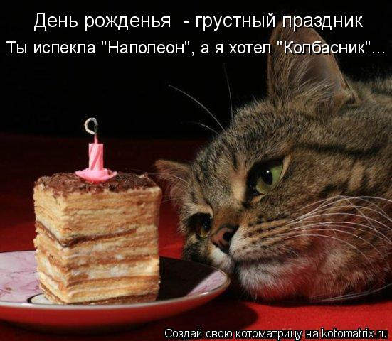 """Котоматрица: День рожденья  - грустный праздник Ты испекла """"Наполеон"""", а я хотел """"Колбасник""""..."""