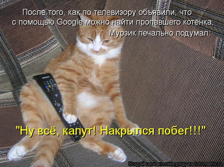 """Котоматрица: После того, как по телевизору объявили, что с помощью Google можно найти пропавшего котёнка, Мурзик печально подумал: """"Ну всё, капут! Накрылся п"""