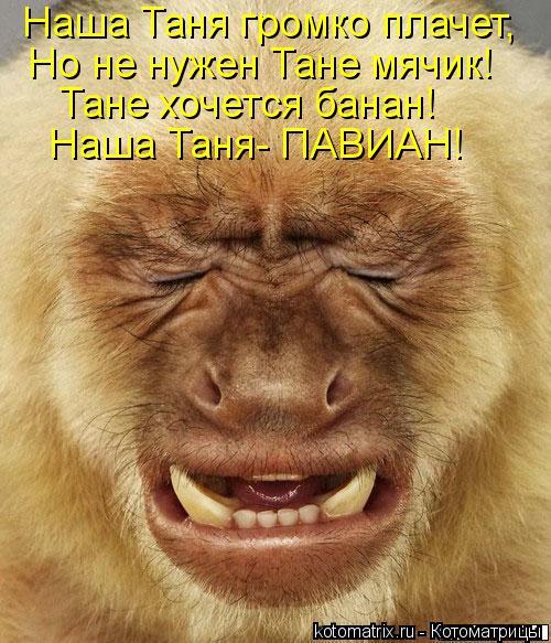 Котоматрица: Наша Таня громко плачет, Но не нужен Тане мячик! Тане хочется банан! Наша Таня- ПАВИАН!