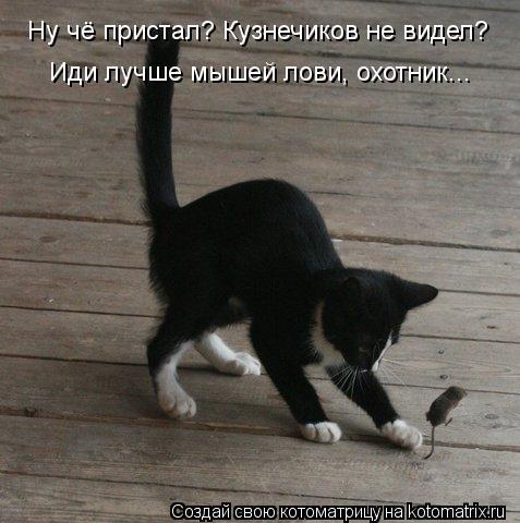 Котоматрица: Ну чё пристал? Кузнечиков не видел? Иди лучше мышей лови, охотник...