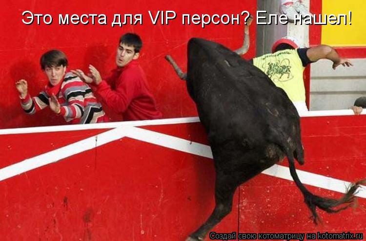 Котоматрица: Это места для VIP персон? Еле нашел!