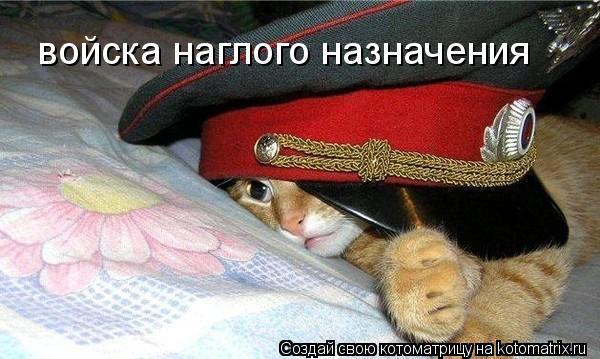 Котоматрица - войска наглого назначения