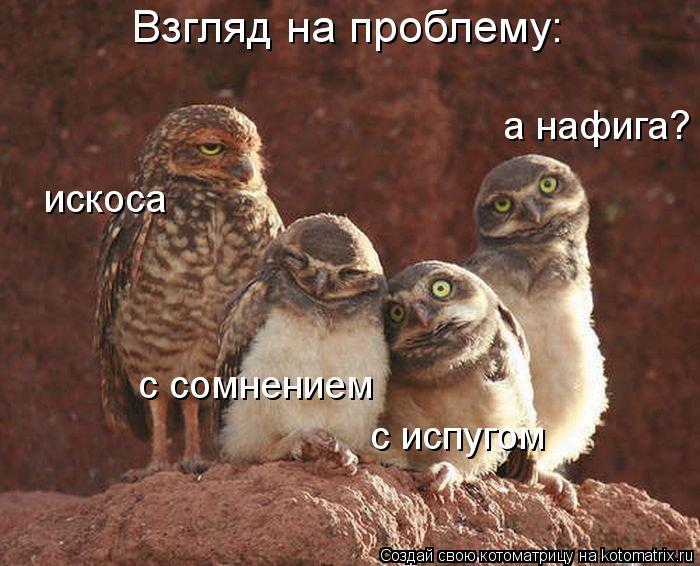 http://kotomatrix.ru/images/lolz/2012/04/10/1161423.jpg