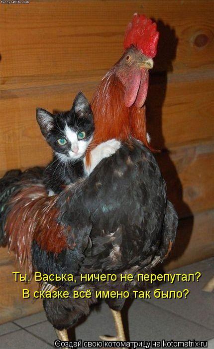 Котоматрица: Ты, Васька, ничего не перепутал? В сказке всё имено так было?
