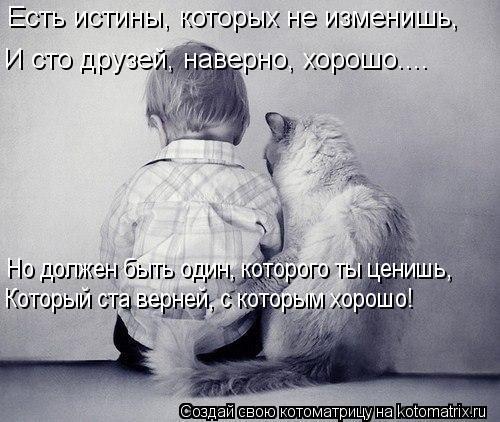 Котоматрица: Есть истины, которых не изменишь, И сто друзей, наверно, хорошо.... Но должен быть один, которого ты ценишь, Который ста верней, с которым хорош