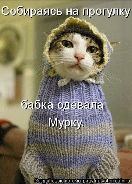 Котоматрица: Собираясь на прогулку бабка одевала Мурку.