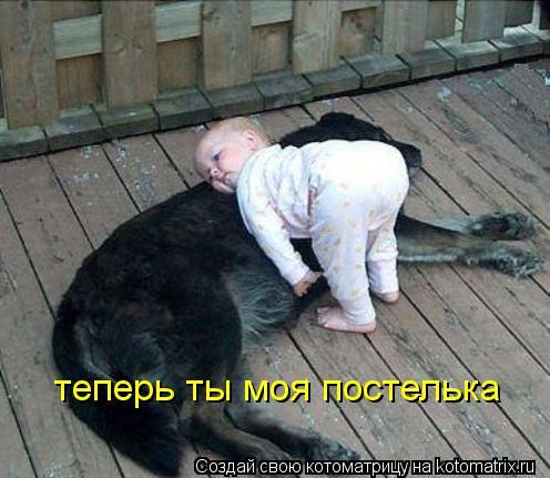 Котоматрица: теперь ты моя постелька
