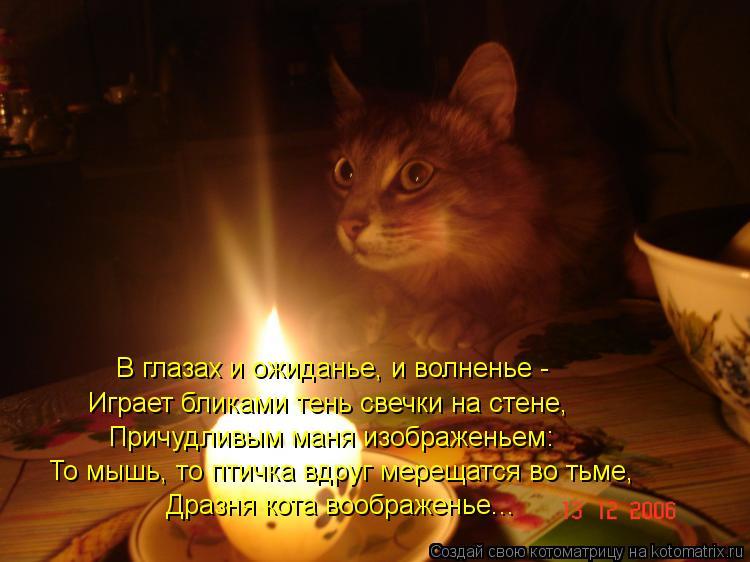 Котоматрица: Дразня кота воображенье... То мышь, то птичка вдруг мерещатся во тьме, Причудливым маня изображеньем: Играет бликами тень свечки на стене, В