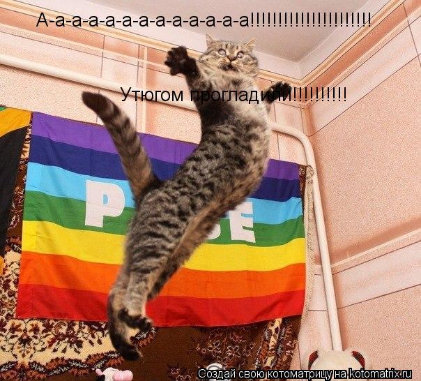 Котоматрица: А-а-а-а-а-а-а-а-а-а-а-а-а!!!!!!!!!!!!!!!!!!!!!! Утюгом прогладили!!!!!!!!!!