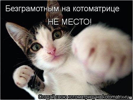Котоматрица: Безграмотным на котоматрице НЕ МЕСТО!