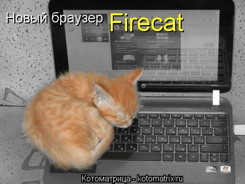 Котоматрица: Новый браузер Firecat