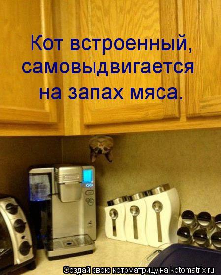 Котоматрица: Кот встроенный, самовыдвигается  на запах мяса.