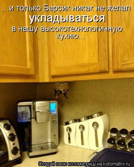 Котоматрица: ...и только Барсик никак не желал укладываться в нашу высокотехнологичную кухню...