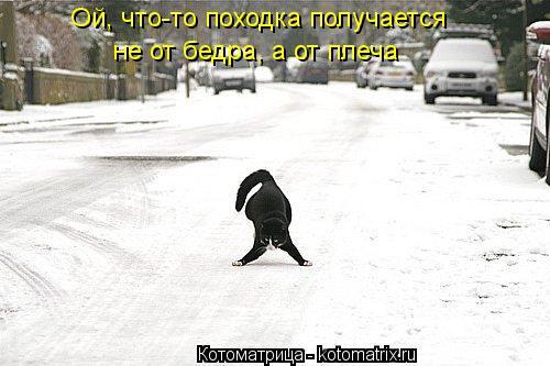 Котоматрица: Ой, что-то походка получается не от бедра, а от плеча