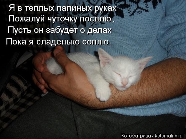 Котоматрица: Я в теплых папиных руках Пожалуй чуточку посплю Пусть он забудет о делах Пока я сладенько соплю. .
