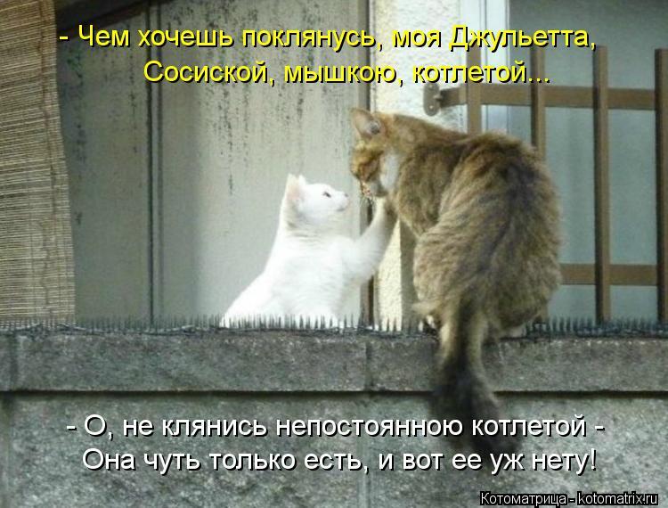 http://kotomatrix.ru/images/lolz/2012/04/19/1168092.jpg