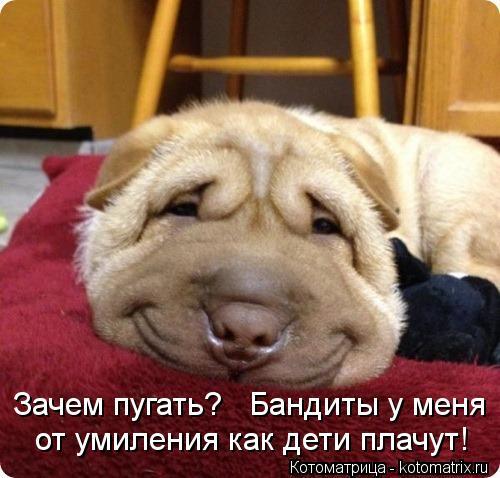 http://kotomatrix.ru/images/lolz/2012/04/20/1168342.jpg