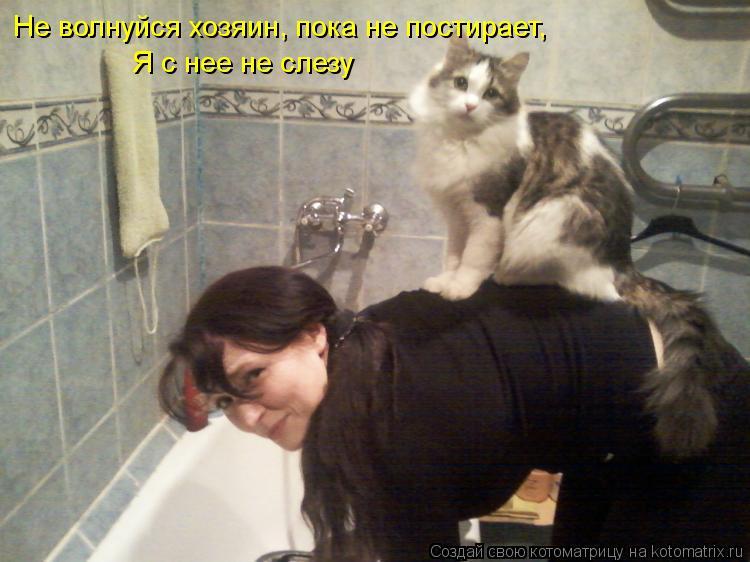 http://kotomatrix.ru/images/lolz/2012/04/21/1169109.jpg