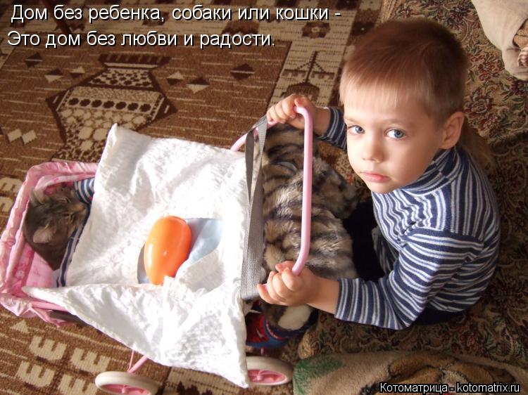 Котоматрица: Дом без ребенка, собаки или кошки - Это дом без любви и радости.
